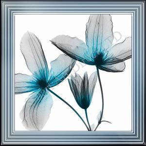 Blue Dayflower I