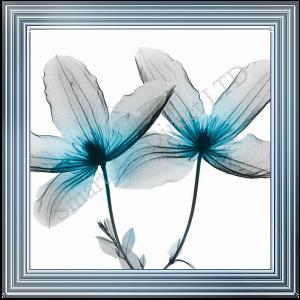Blue Dayflower II