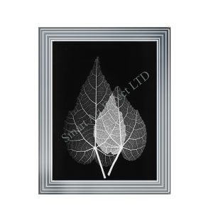 Black & White Leaf II