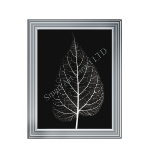 Black & White Leaf I