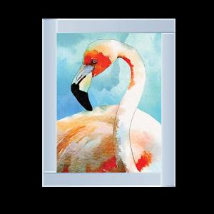 Amazing Flamingos II