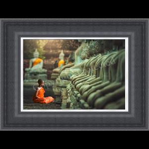 Young Buddhist Monk Praying