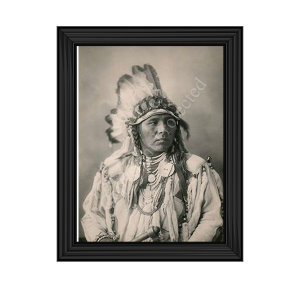 Spotted Jack Rabbit - Crow - 1898